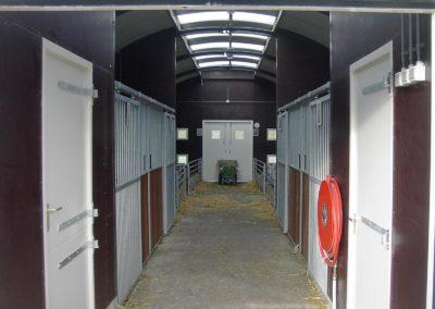 Romneyloods veestal kinderboerderij